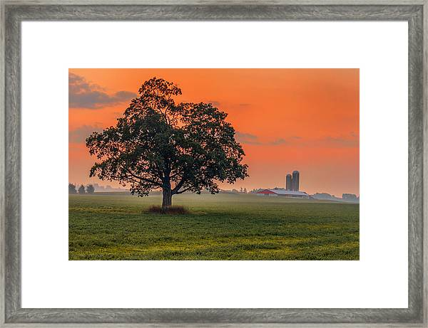 Framed Print featuring the photograph One Fine Morning by Garvin Hunter