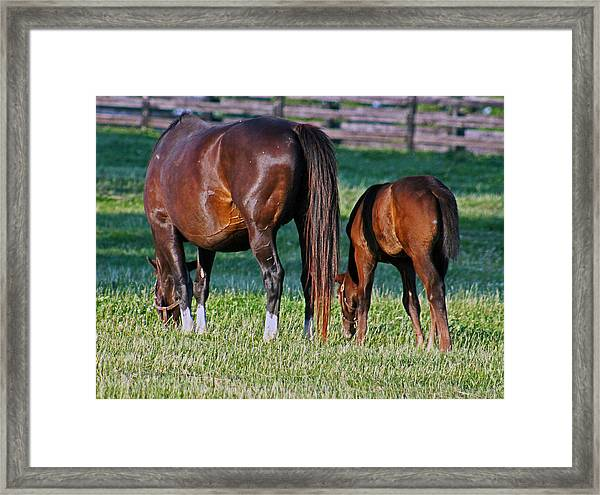 One Two Framed Print