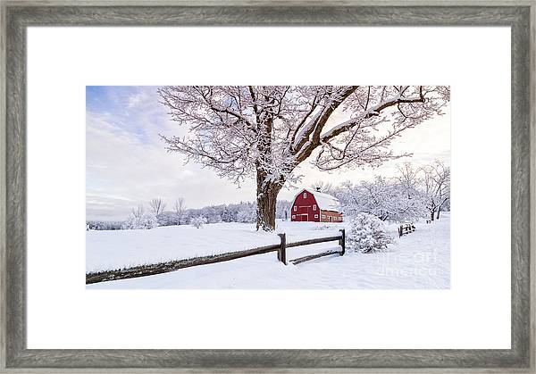 One Winter Morning On The Farm Framed Print