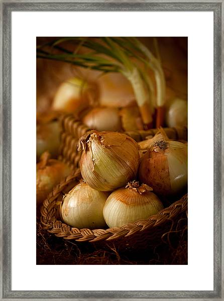 Onion1961 Framed Print