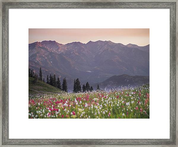 Only Opportunities Framed Print