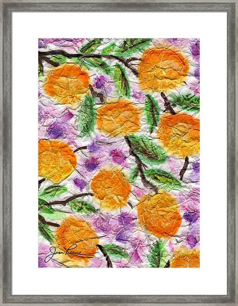 Orange Blossoms Framed Print