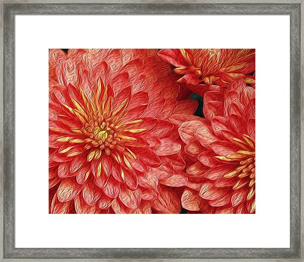 Orange Petals Framed Print