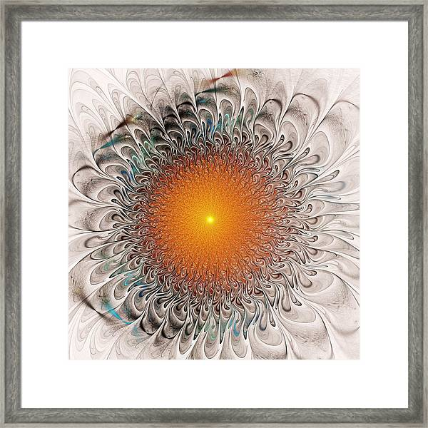 Orange Zone Framed Print