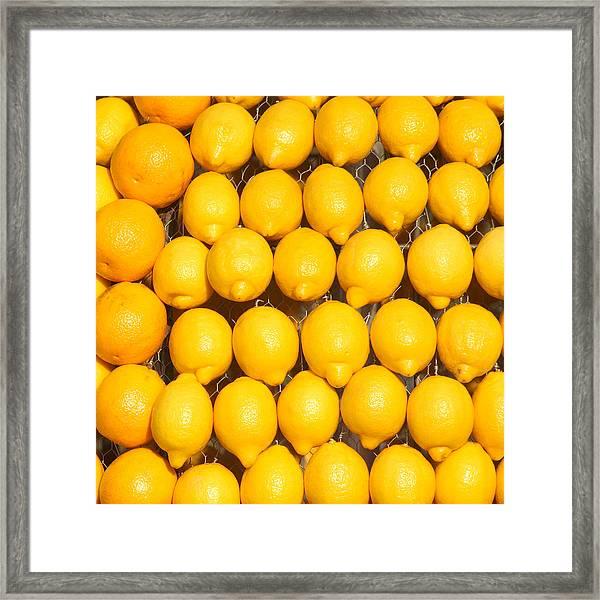 Oranges And Lemons Framed Print