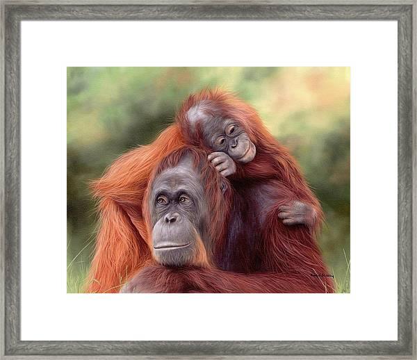 Orangutans Painting Framed Print