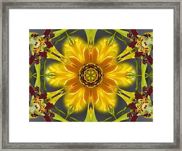 Orchid Flower Star Mandala Framed Print
