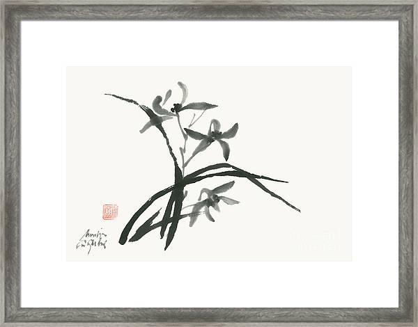 Orchid 's Grace Framed Print by Nadja Van Ghelue