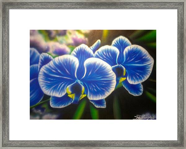 Orchid-strated Blues Framed Print