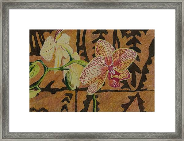 Orchid With Tapa Framed Print