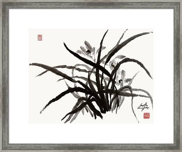 Orchids In Spring Framed Print
