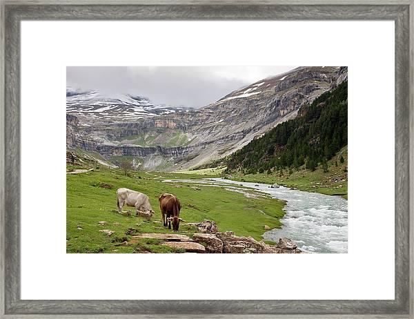 Ordesa National Park Framed Print