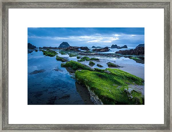 Oregon Blues Framed Print