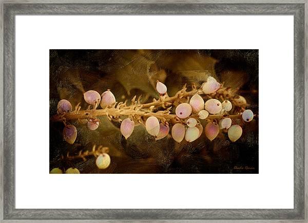Oregon Fruit - Oil Version Framed Print
