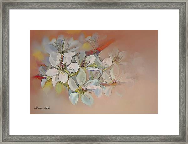 Oriental Pear Blossom Branch Framed Print