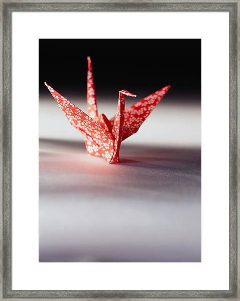 Origami Crane Framed Print by Ryan McVay
