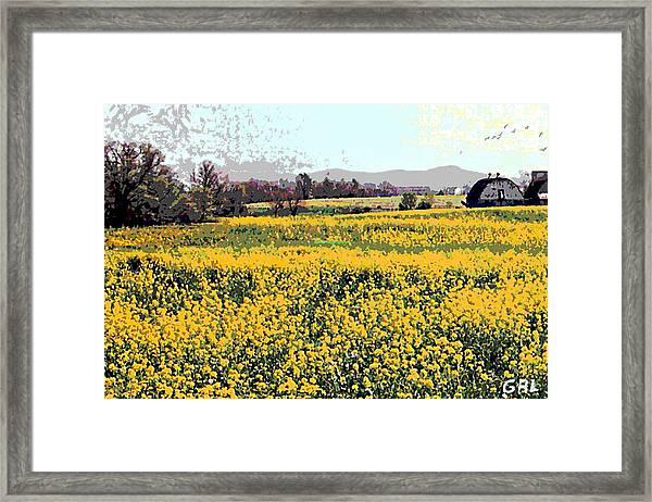 Framed Print featuring the painting Original Fine Art Digital Fields Yellow Flowers Maryland by G Linsenmayer
