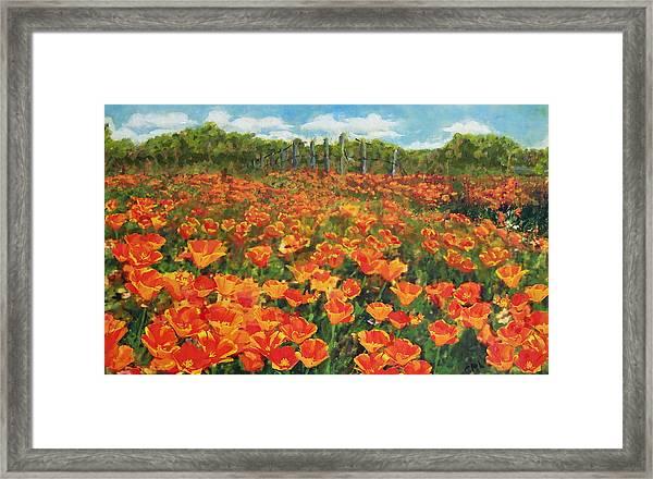 Framed Print featuring the painting Original Fine Art Painting Orange Popies North Carolina by G Linsenmayer