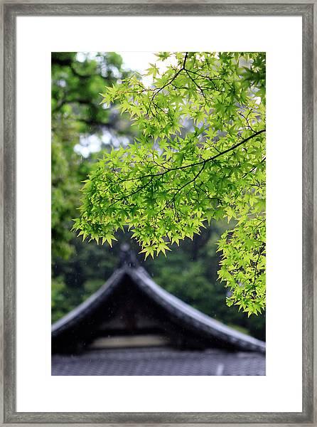 Ornately Designed Roof And Japanese Framed Print by Paul Dymond