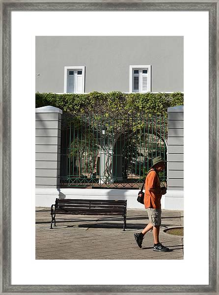 Osj 4447 Framed Print