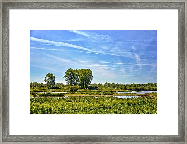 Ossenwaard Near Deventer Framed Print