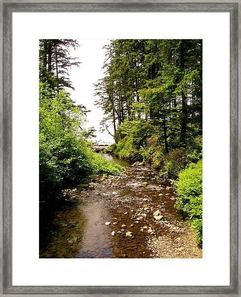 Oswald West 1 Framed Print