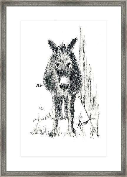Our New Friend Framed Print