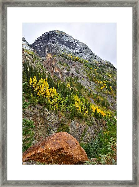 Ouray Canyon Fall Color Framed Print