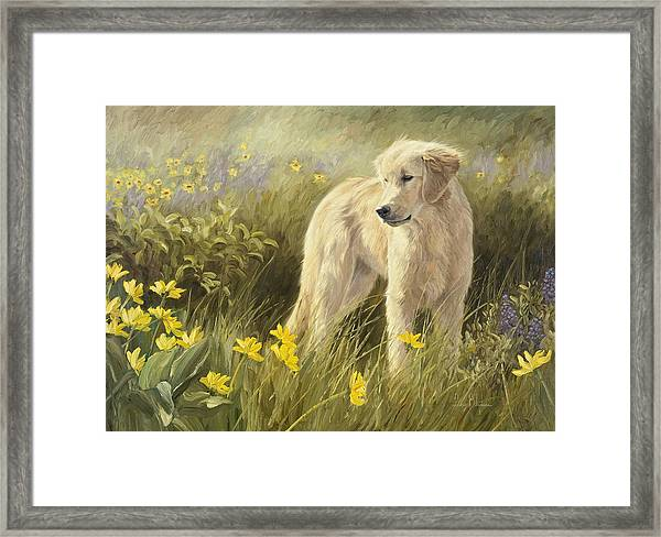 Out In The Field Framed Print
