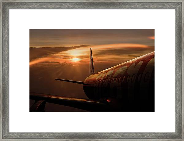 Out Of The Flight Framed Print