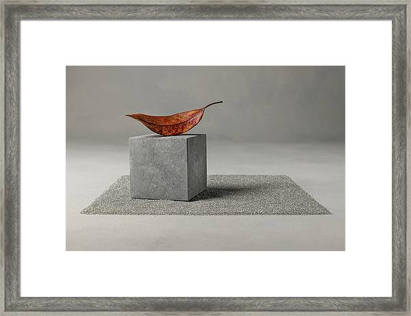 Out Of Time Framed Print by Christophe Verot