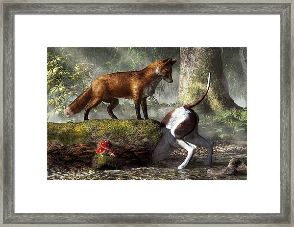 Outfoxed Framed Print