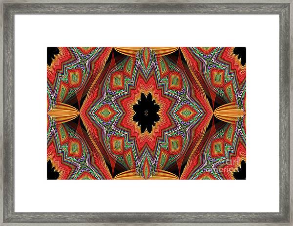 Ovs 16 Framed Print