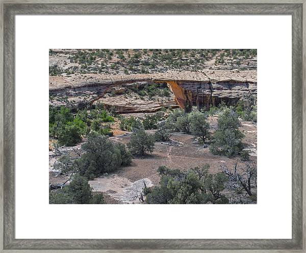 Owachomo Natural Bridge Framed Print