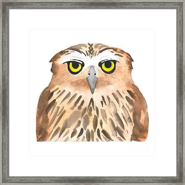Owl Bird. Watercolor, Vector Framed Print