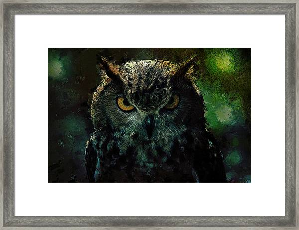 Owlish Tendencies Framed Print
