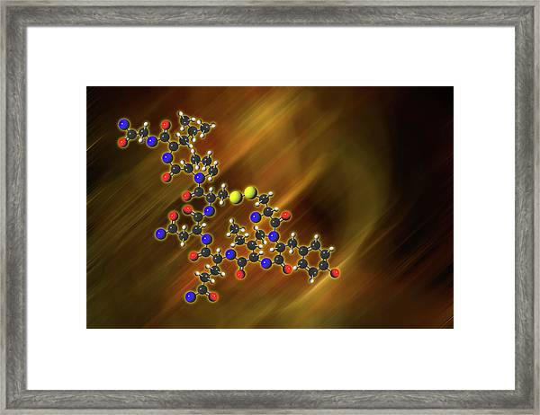 Oxytocin Molecular Model Framed Print