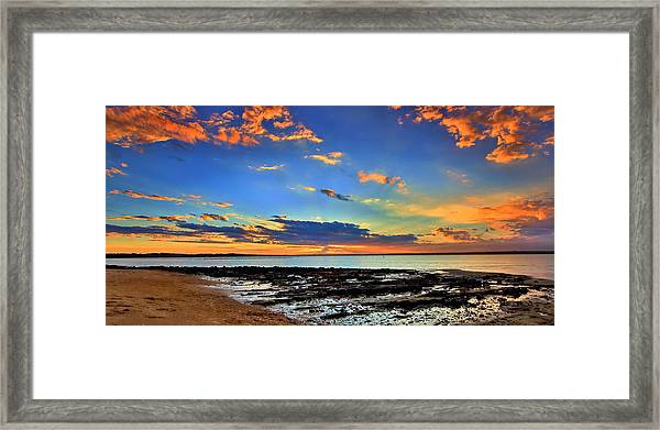 Oysters Aglow Framed Print