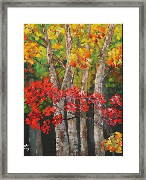 Ozark Woods Framed Print