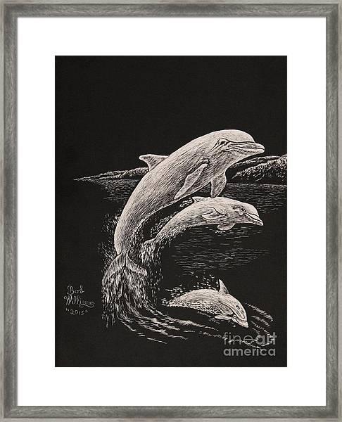 Pacific Ocean Acrobats  Framed Print