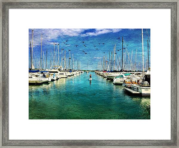 Paddle Boarder  In The Harbor Framed Print