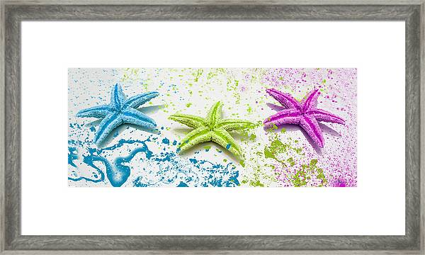 Paint Spattered Star Fish Framed Print