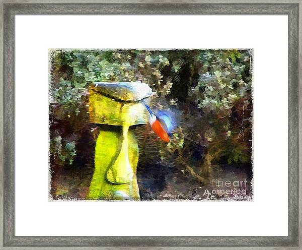 Painted Bullfinch S3 Framed Print