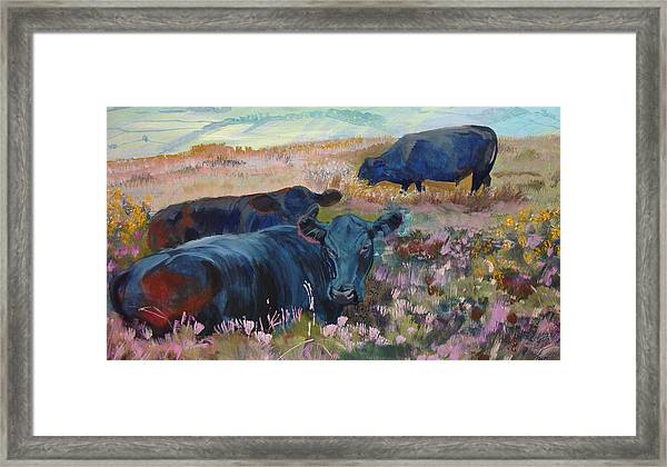 Painting Of Three Black Cows In Landscape Without Sky Framed Print