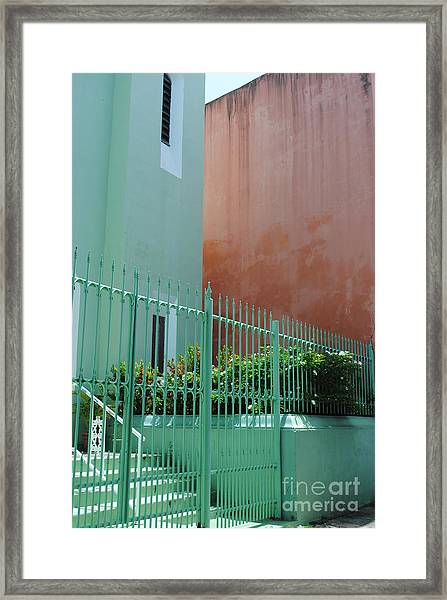 Pale Green With Pink Walls Framed Print