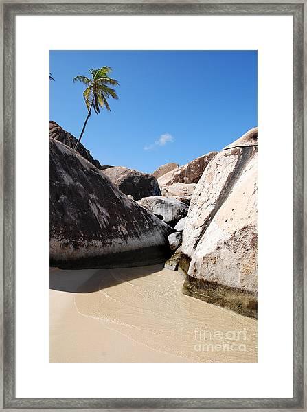 Palm At The Baths Virgin Islands Framed Print