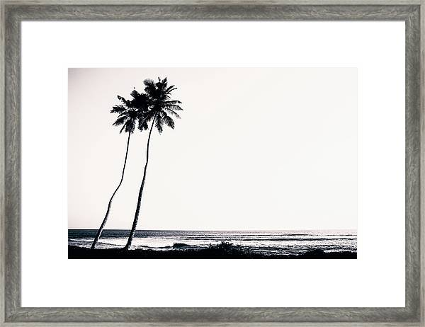 Palm Trees And Beach Silhouette Framed Print