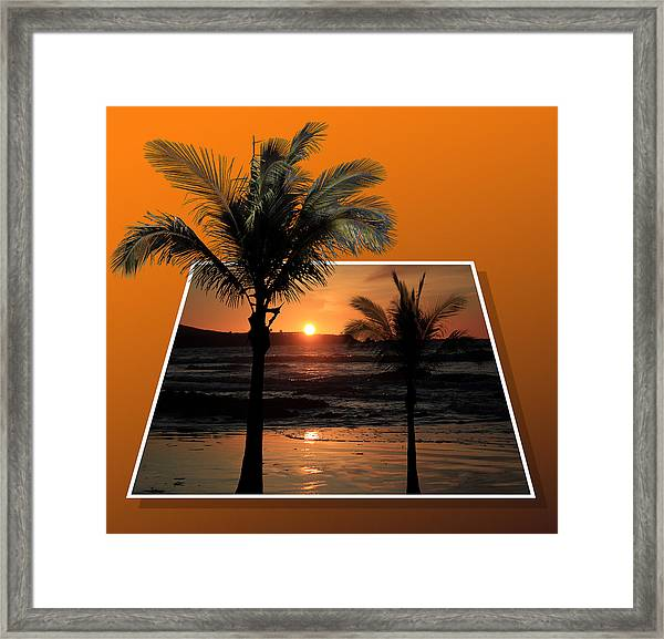 Palm Trees At Sunset Framed Print