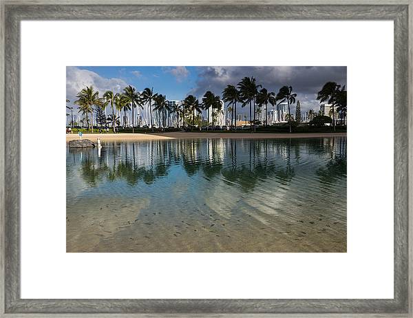 Palm Trees Crystal Clear Lagoon Water And Tropical Fish Framed Print