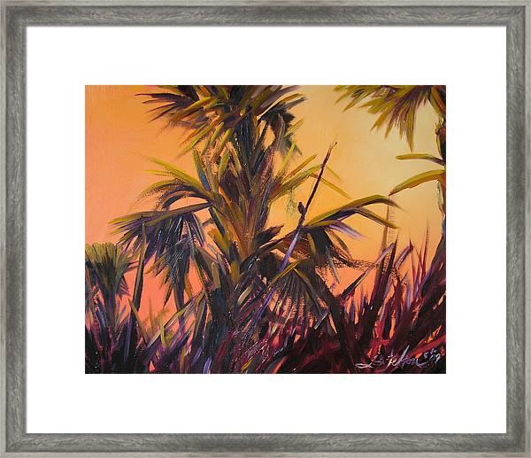 Palmettos At Dusk Framed Print